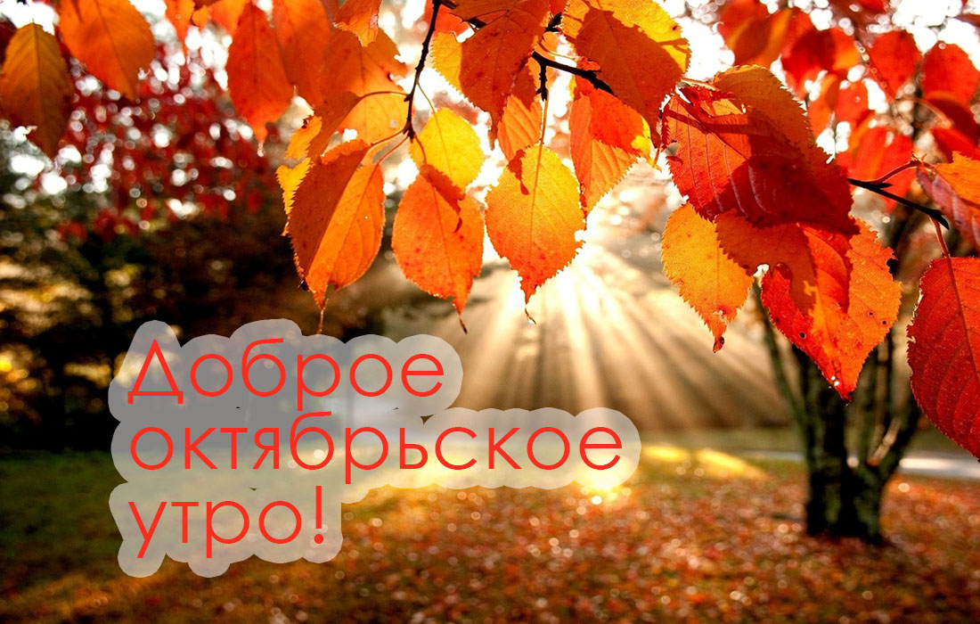 dobrogoutra_ru_832.jpg