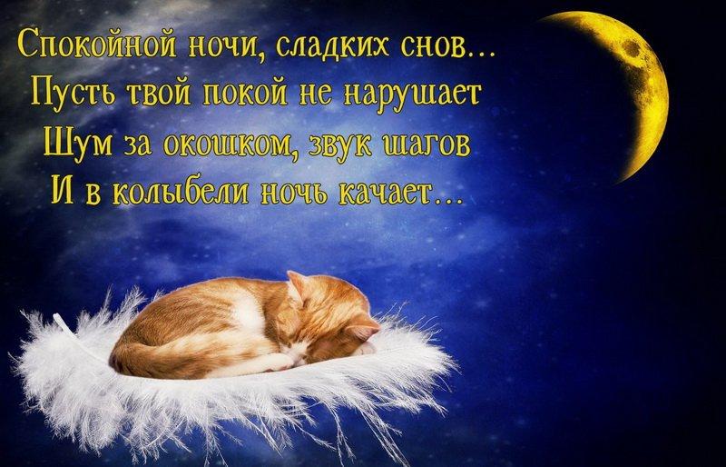 Что же можно пожелать человеку, которому вы искренне желаете хорошо отдохнуть, выспаться и увидеть самые красивые сны?